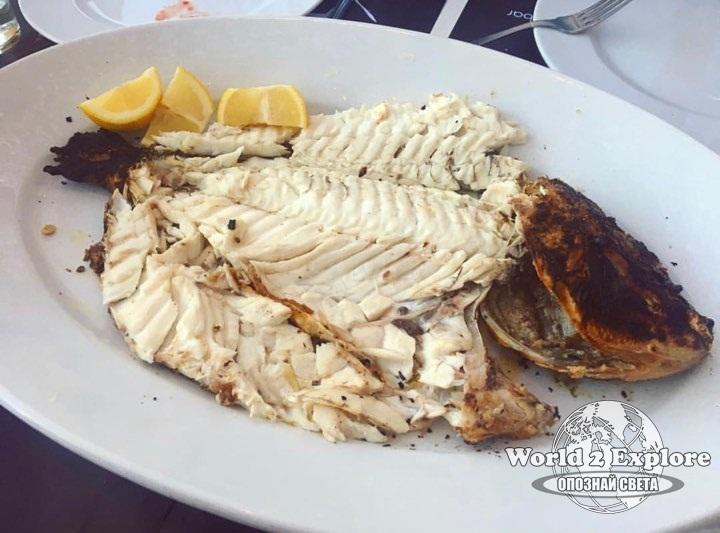 гръцки-риба