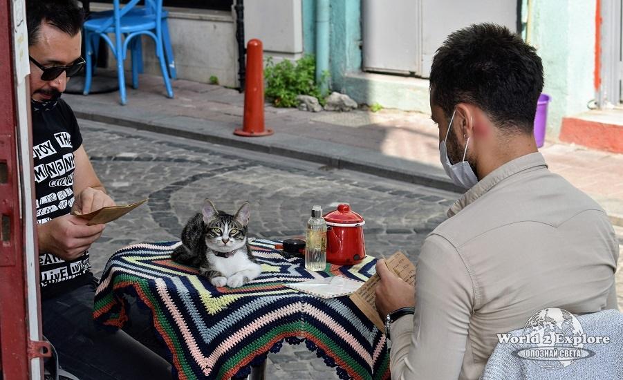 котета-истанбул